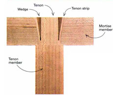 wedged Mortise and Tenon Joint anatomy